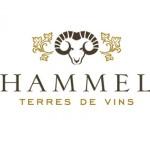 Hammel logo